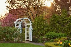 White Arch in Romantic Flower Garden. White Arch in Romantic Garden Path with Trees and Tulip Flowers Stock Photos