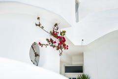 White architecture on Santorini island Stock Images