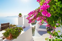 White architecture on Santorini island, Greece. Beautiful terrace with pink flowers, sea view Royalty Free Stock Photos