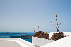 White architecture on Santorini island, Greece. Decorative flowers on the terrace. Beautiful view on the sea. White architecture on Santorini island, Greece Royalty Free Stock Photography