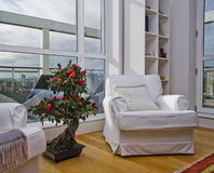 White armchair with bonsai tree. Large armchair with a bonsai tree on fron of huge floor to ceiling window and city views Royalty Free Stock Photography
