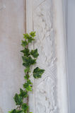 White art stucco gypsum wall with a grean loach branch on it Stock Image