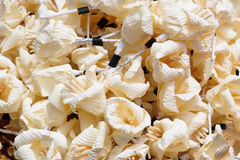 White artifical flowers (used during a funeral) - kind of wood f Royalty Free Stock Image
