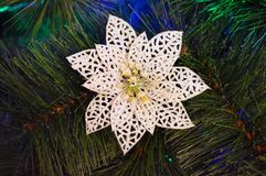 White artificial flower on a Christmas tree. Snow flower. Background Royalty Free Stock Images