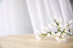 White artificial flowers Stock Images