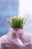 White artificial flowers arranged in  mini cardboard pot Stock Photography