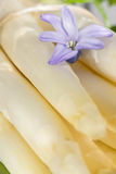 White asparagus with a blossom Royalty Free Stock Photo