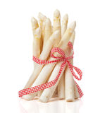 White asparagus Bunch with ribbon Stock Photos