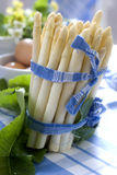 White asparagus just before cook Stock Photography