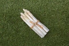 White asparagus. Asparagus white, spargel green isolated vegetarian Royalty Free Stock Photo