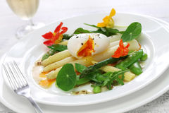 White asparagus warm salad Royalty Free Stock Image