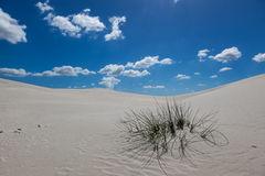 White Atlantis Sand Dunes Stock Photography