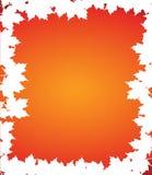 White autumn border leaves illustration Royalty Free Stock Image