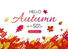 White autumn 50% sale. Promo poster with red leaves. White autumn 50 sale. Promo poster with red leaves. Online shopping. Vector background Royalty Free Illustration