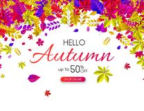 White autumn 50% sale. Promotion poster with falling leaves. White autumn 50 sale. Promotion poster with falling leaves. Online shop. Vector background Royalty Free Illustration