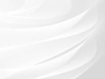 White background Stock Image