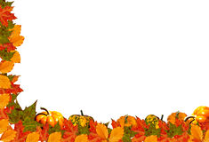 White Background With Autumn Half Frame. Illustrations - White background with fall leaves and pumpkins  half frame Royalty Free Stock Image