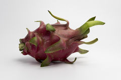 White background Dragon Fruit royalty free stock photography
