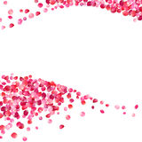 White background with pink rose petals waves. Background with pink rose petals waves Royalty Free Stock Photography