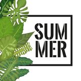 White background with side left border decorative green leaves and rectangular frame with summer text. Vector illustration stock illustration