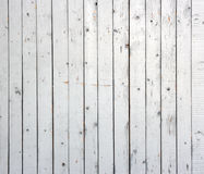 White background of weathered painted wooden plank. Stock Images