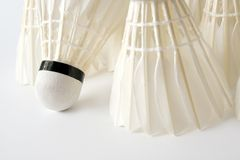 White badminton shuttlecocks. Close-up Stock Photos