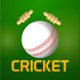 White ball with bails for Cricket. Royalty Free Stock Photos