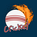 White ball in fire for Cricket. Royalty Free Stock Photography