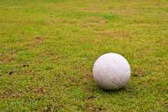 White ball on green grass Royalty Free Stock Photos