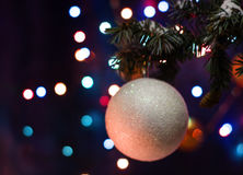 White ball toy decorations on tree Royalty Free Stock Photo