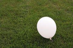 White balloon. On green grass Royalty Free Stock Photos