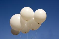 White balloons Stock Image