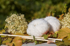 White balls of soft wool on the table in the garden. In autumn Stock Photo
