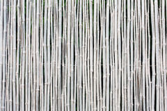 White bamboo fence texture background Stock Photo