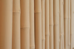 White bamboo Partitions. Wood texture Royalty Free Stock Photography