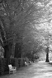 White banches  in Lazienki Park Warsaw Poland Royalty Free Stock Photo