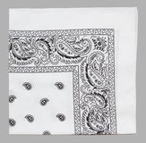 White bandanna Royalty Free Stock Image