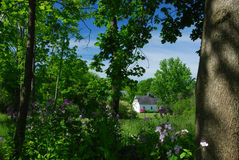 White barn in a distant meadow, flowers and trees in the foreground. Green purple white clouds early royalty free stock image