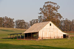 White Barn at Sunset. Using late afternoon sun, this photo was taken in the countryside near Petaluma, California Royalty Free Stock Photos