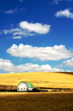 White Barn in  a wheat filed under pretty sky. Barn in the mist of a wheat field under a puufy cloud blue sky Royalty Free Stock Photos