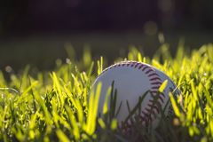 Pearly, white baseball in fresh, green grass on a brisk, spring afternoon stock photo