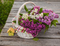 White basket with a branch of lilac Stock Photography