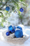 White basket with decorative xmas balls on the snow and blue balls on christmas tree outdoors. In bright sunshine Royalty Free Stock Photography