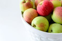 White basket with red and green apples on front of white wooden wall. Harvest concept.  royalty free stock photography