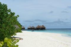 White beach Stock Image