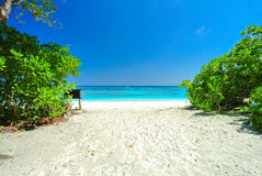 White Beach and Blue Ocean with  Blue Sky at Tachai Island Thail. And Stock Photos