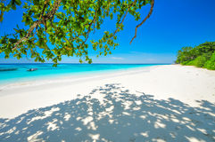 White Beach and Blue Ocean with  Blue Sky at Tachai Island Thail. And Stock Photography