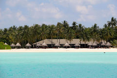 White beach with coconut palms and bungalows on the Maldives Royalty Free Stock Photography