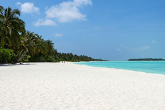 White beach with coconut palms and water on the Maldives Royalty Free Stock Images