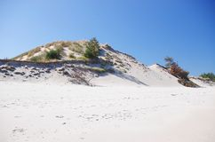 White beach and dunes Royalty Free Stock Photo